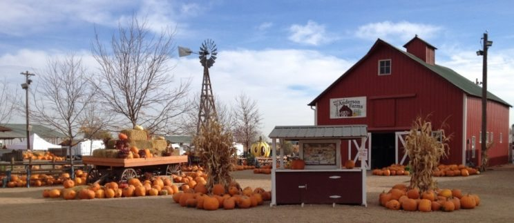 Anderson Farms Fall Fest