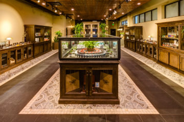 Top Cannabis Dispensary in Denver
